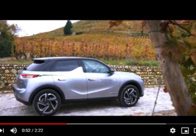 Vidéo : à travers les vignes de la Cave de Tain
